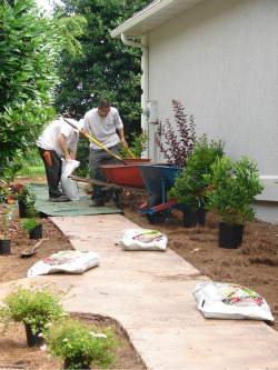 Dreamgardens landscaping and design maintenance